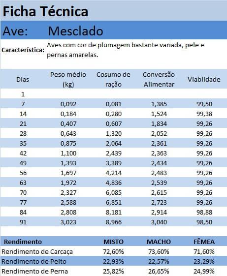 ficha_mesclado