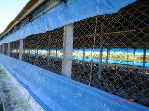 img-manejo-cortina-azul